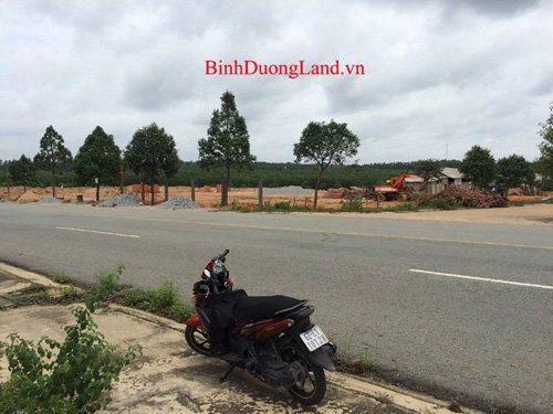 truong-tieu-hoc-chanh-phu-hoa-2015